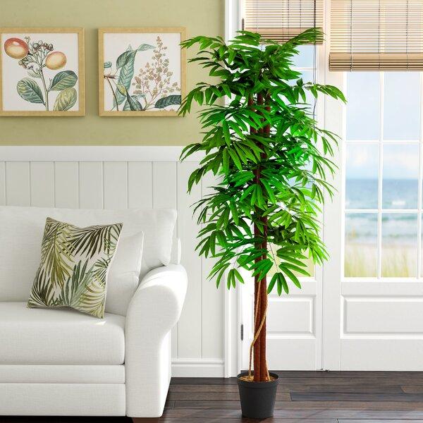 Aritificial Mango Tree Plant in Plastic Pot by Bayou Breeze