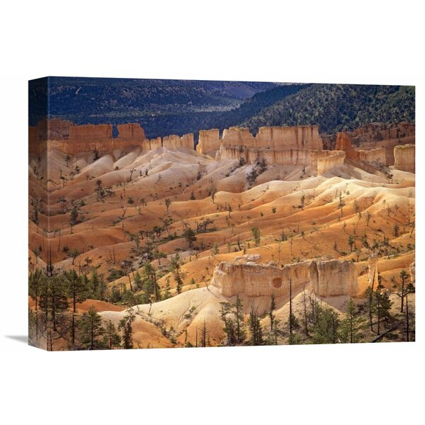 Nature Photographs Landscape of Eroded Formations Called Hoodoos and Fins, Bryce Canyon National Park, Utah by Tim Fitzharris Photographic Print on Wrapped Canvas by Global Gallery