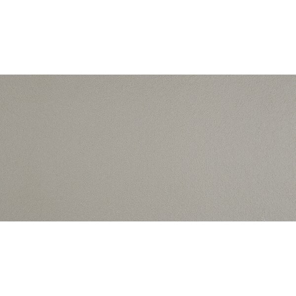 Aledo 12 x 24 Porcelain Field Tile in Grey by Itona Tile