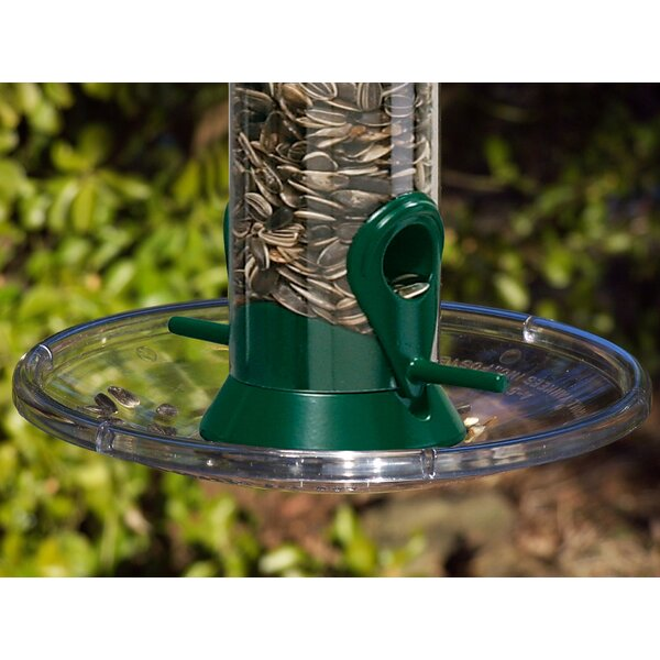 Seed Tray Bird Feeder by Droll Yankees