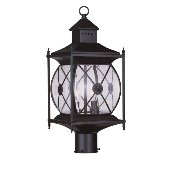 Contemporary Outdoor 2-Light Lantern Head by Darby Home Co