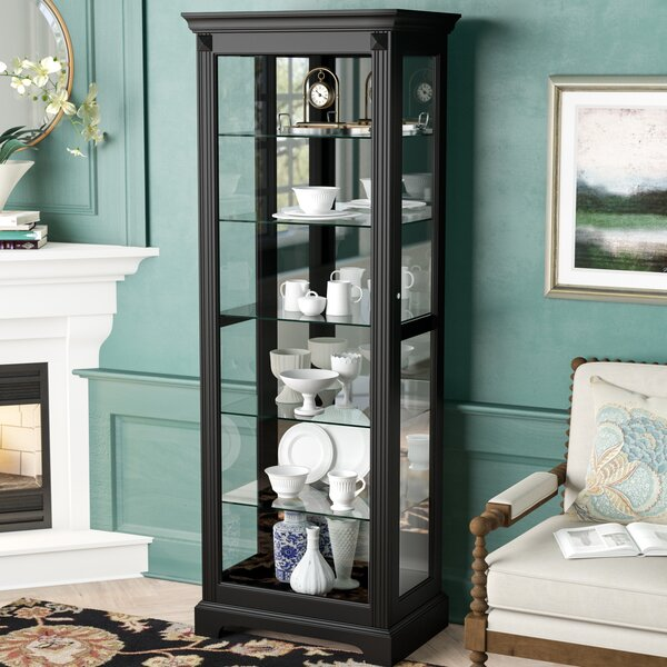 Napier Lighted Curio Cabinet by Darby Home Co