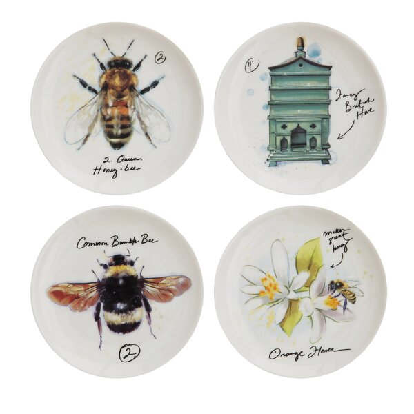 Field Guide Plates by Birch Lane™