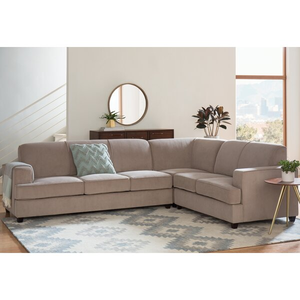 Caswell Sleeper Sectional by Darby Home Co