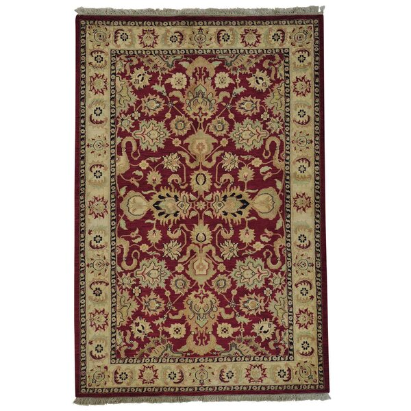 Burgundy Rajasthan and Plush Hand-Knotted Burgundy/Beige Area Rug by Bloomsbury Market