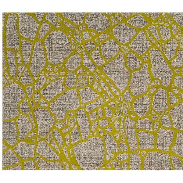 Sevastopol Gray/Green Area Rug by Wrought Studio