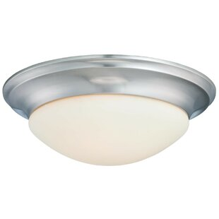 Compare & Buy Pouliot 2-Light Flush Mount By Charlton Home