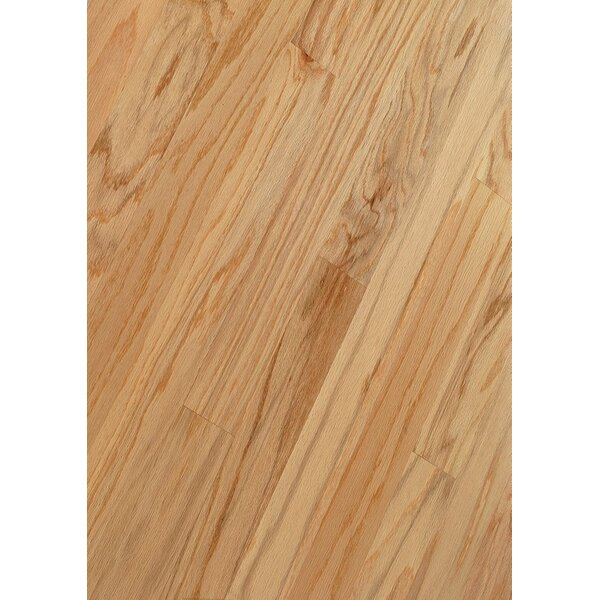 3 Engineered Oak Hardwood Flooring in Natural by Armstrong Flooring