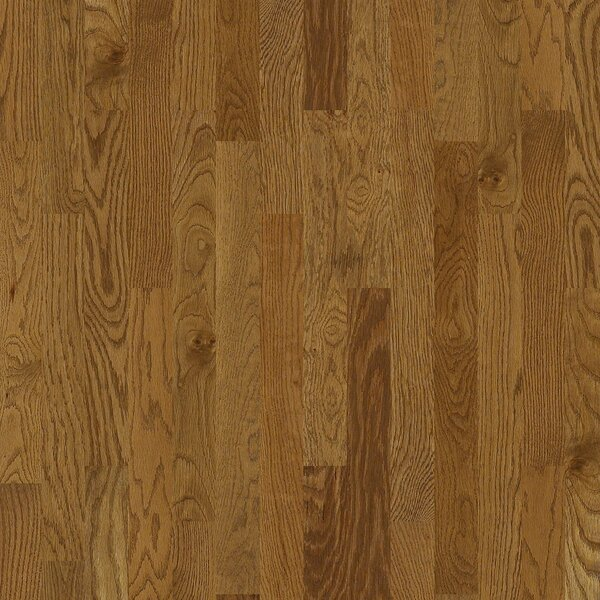 Basinger 4 Solid White Oak Flooring in Trentson by Shaw Floors
