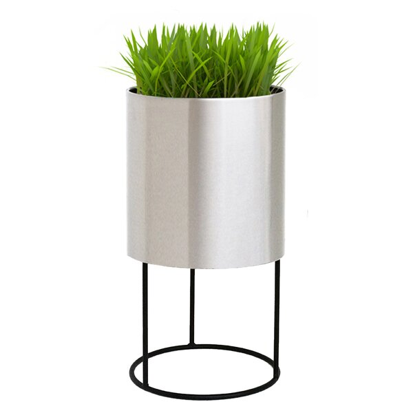 Knox Iron Pot Planter by NMN Designs