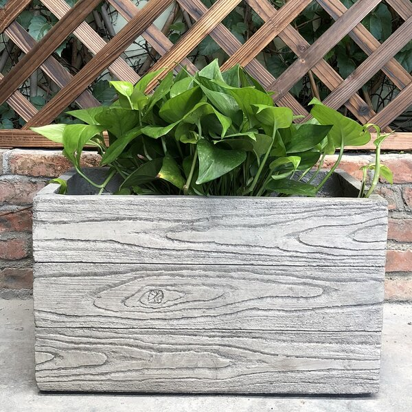 Sprague Natural Wood Grain Box Planter Box by Union Rustic