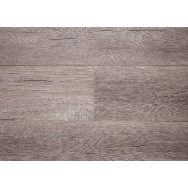 Tripple Moisture 6 x 48 x 12mm Oak Laminate Flooring by Chic Rugz