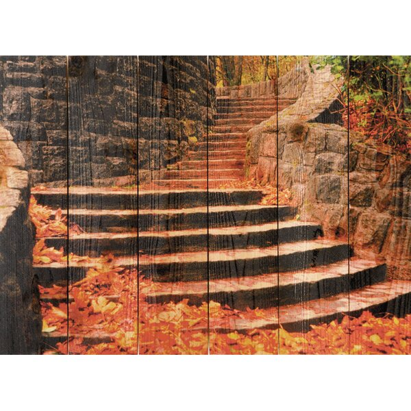 Fall Steps Photographic Print by Gizaun Art