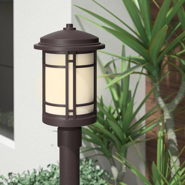 Cardin LED Lantern Head by Brayden Studio