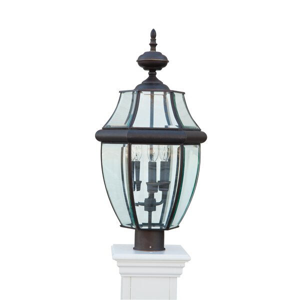 Tressie 3-Light Lantern Head by Darby Home Co
