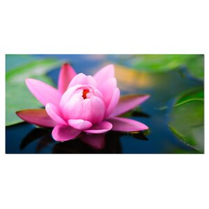 Large Lotus Flower in the Pond Photographic Print on Wrapped Canvas by Design Art