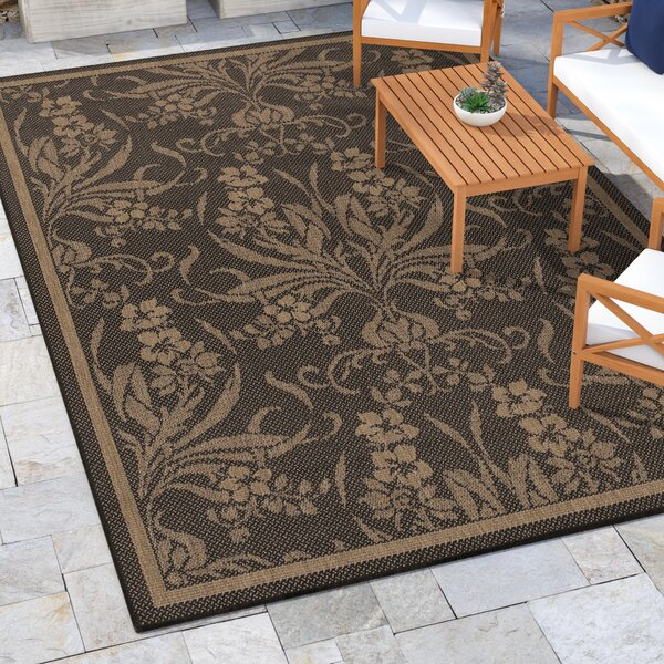 Celia Black/Cocoa Brown Indoor/Outdoor Area Rug by Beachcrest Home