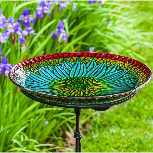 Bold Floral Birdbath by Evergreen Enterprises, Inc