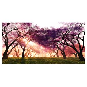 'Cherry Blossoms Japan Garden' Photographic Print on Wrapped Canvas by Design Art