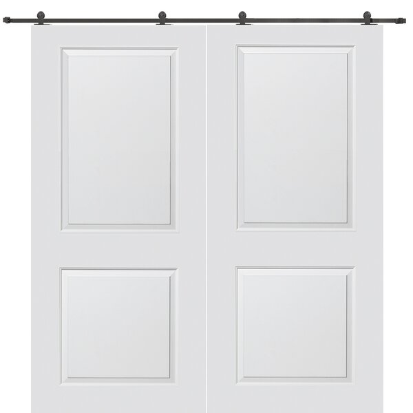 Carrara Smooth Surface Solid Panelled Interior Barn Double Door by Verona Home Design