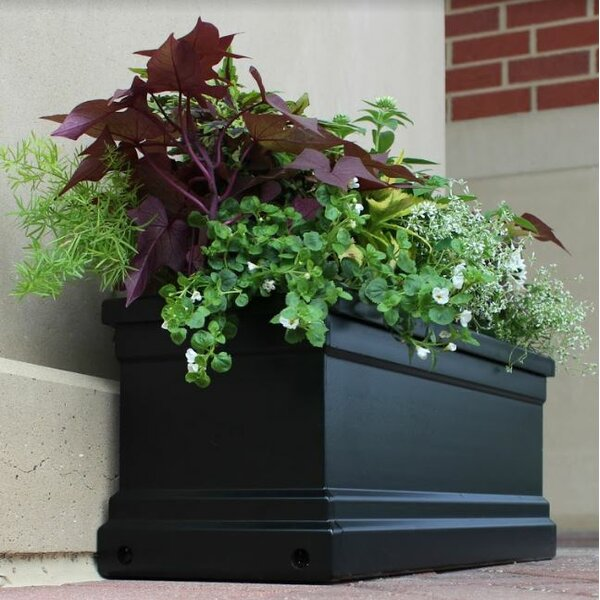 Bloomz Fiberglass Window Box Planter by Outdoor Distinctions