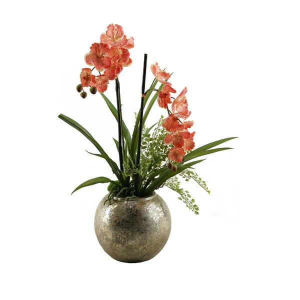 Vanda Orchids Floor Plant in Planter by D & W Silks