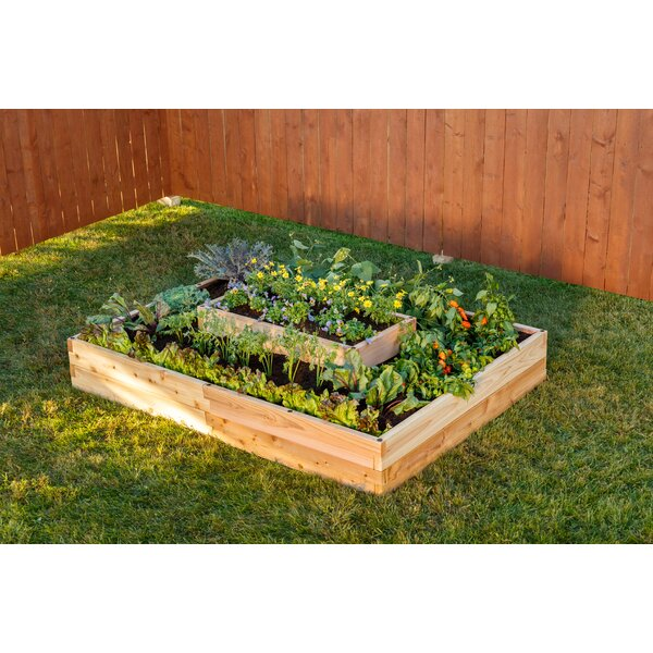 3-Tier 3.5 ft x 5 ft Wood Raised Garden by YardCraft