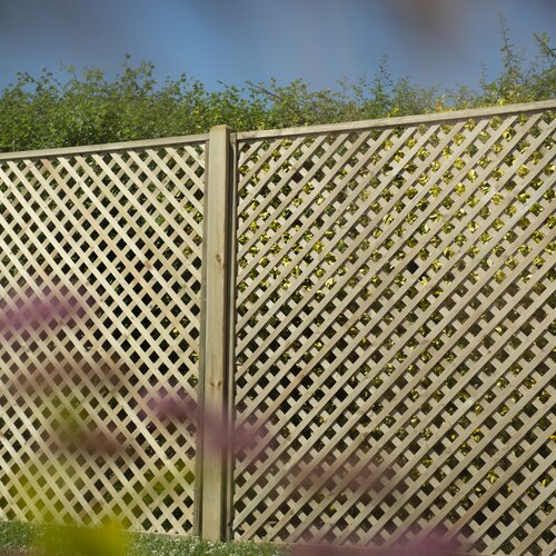 Nya Wood Lattice Panel Trellis (Set of 3) Sol 72 Outdoor Size: 180cm H x 180cm W
