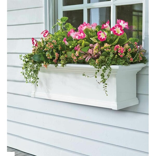 Yorkshire Self-Watering Plastic Window Box Planter by Plow & Hearth