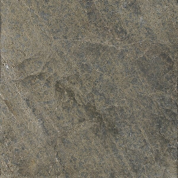 16 x 16 Natural Stone Field Tile in Polished Ostrich Grey by MSI