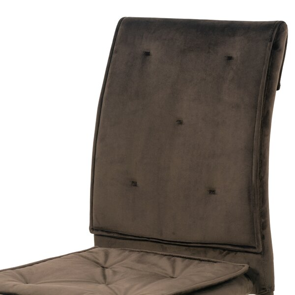 Berrios Velvet Side Chair In Brown (Set Of 2) By Mercer41