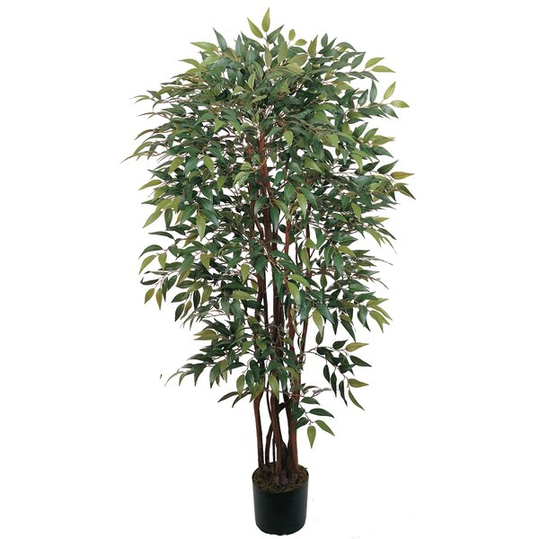 Silk Similax Tree in Pot by Nearly Natural