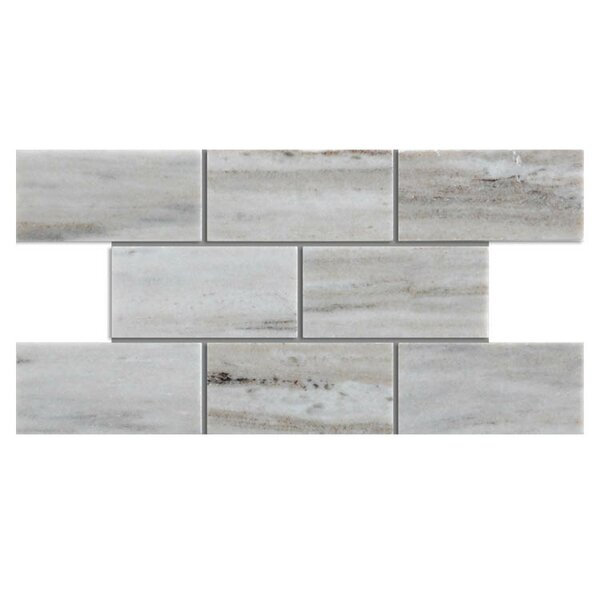 Polished 2 x 4 Natural Stone Mosaic Tile in Palissandro by QDI Surfaces