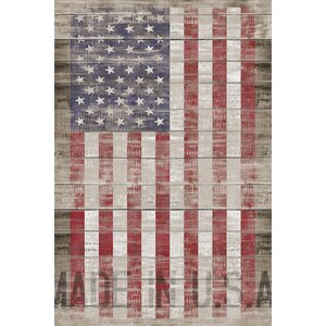 American Flag II Graphic Art on Wrapped Canvas by August Grove