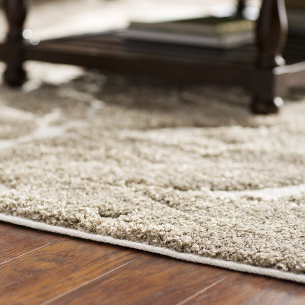 Cincinnatus Beige Floral Area Rug by Three Posts