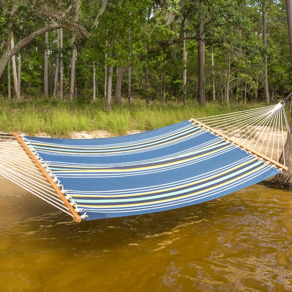 Cara Stripe Double Tree Hammock by Freeport Park