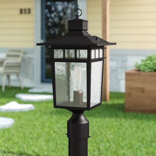 Reviews Sherly Outdoor 1-Light Lantern Head By Bloomsbury Market