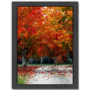 'Season Autumn Fall Colorful Leafes Tree' Framed Photographic Print by East Urban Home