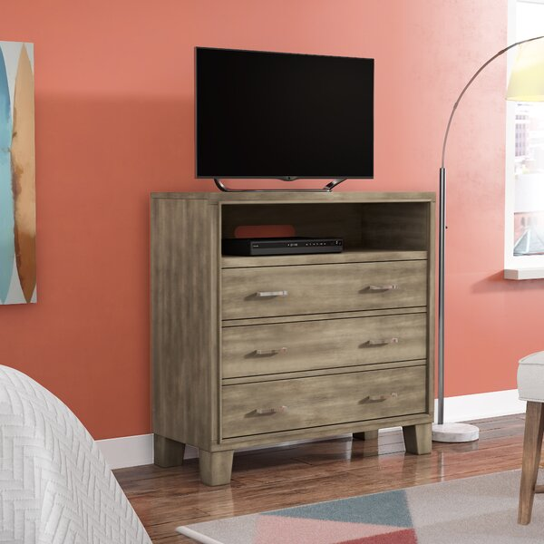 Brigham Solid Wood TV Stand For TVs Up To 40