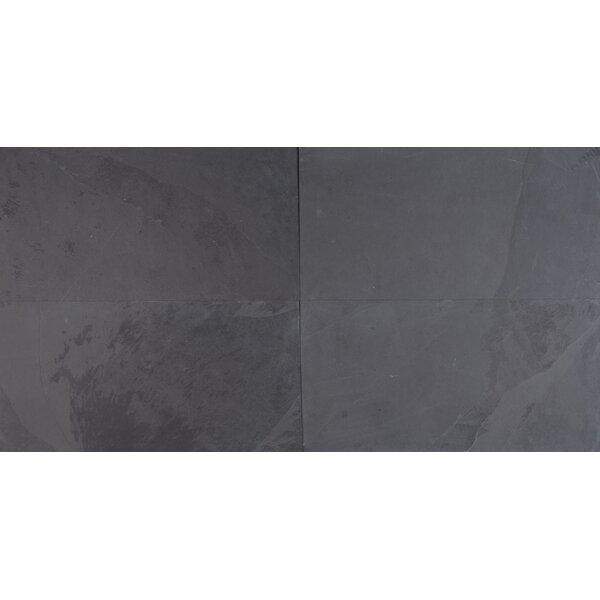 Montauk 12'' X 24'' Slate Field Tile in Black by MSI