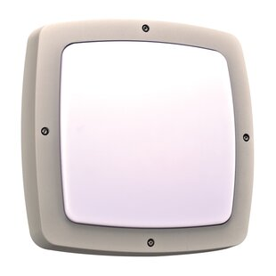 Order Maidenhead 2-Light Outdoor Flush Mount By Ebern Designs