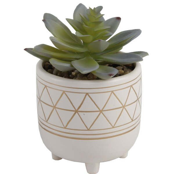 Gold Geo Hand Painted Legs Desktop Succulent Plant in Ceramic Pot by Bungalow Rose