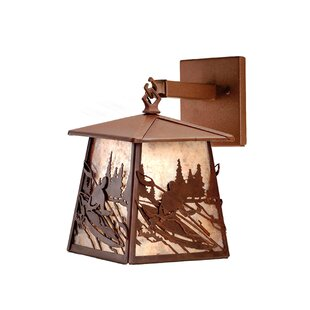 Purchase 1-Light Outdoor Wall Lantern By Meyda Tiffany