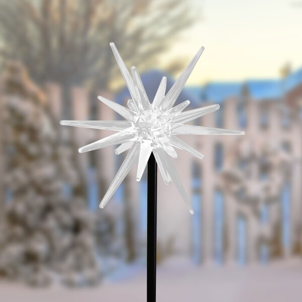 Solar Acrylic LED Star Garden Stake by The Holiday Aisle