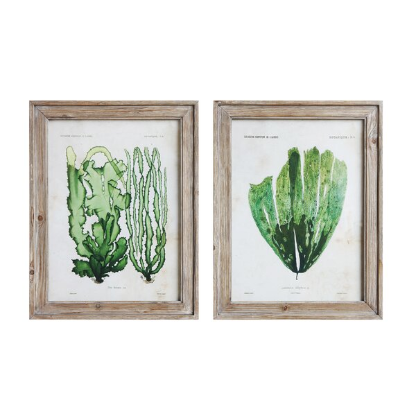 2 Piece Rectangle Framed Graphic Art Print Set on Wood by Gracie Oaks
