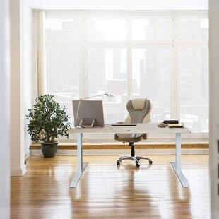 Mollie Ergonomic Height Adjustable Standing Desk