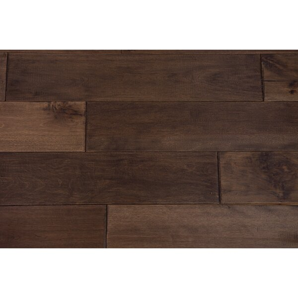 Seine 4-3/4 Solid Birch Hardwood Flooring in Sunflower Seed by Branton Flooring Collection