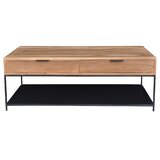 Rothenberg Frame Coffee Table with Storage by Union Rustic