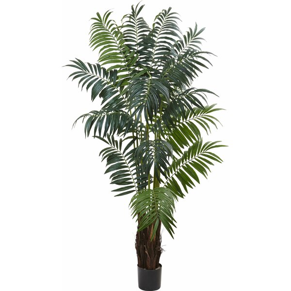 Bulb Areca Palm Tree in Pot by Nearly Natural