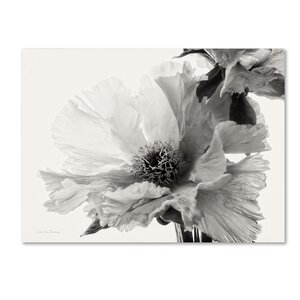 'Translucent Peony VBW' Print on Wrapped Canvas by